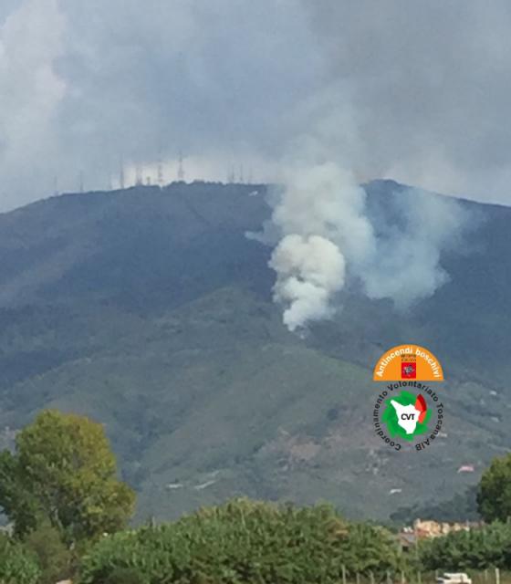 Calci, incendio sul Monte Serra