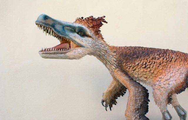 Dinosauri Incontri metodi