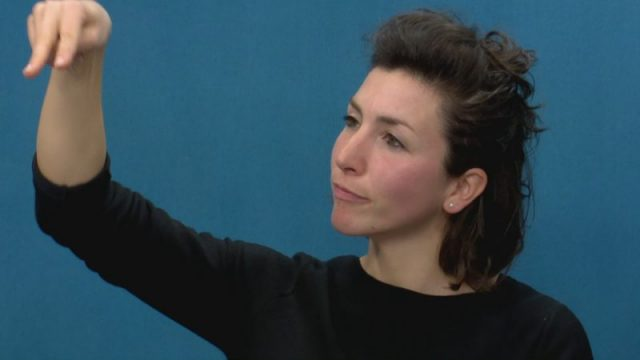 la lingua dei segni
