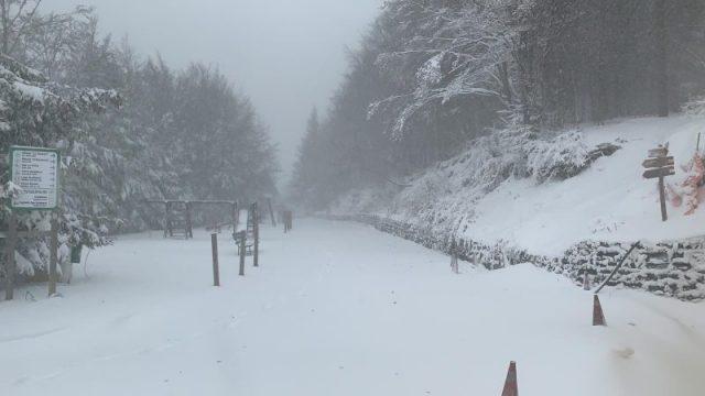 assaggio dell'inverno, è arrivata la prima neve